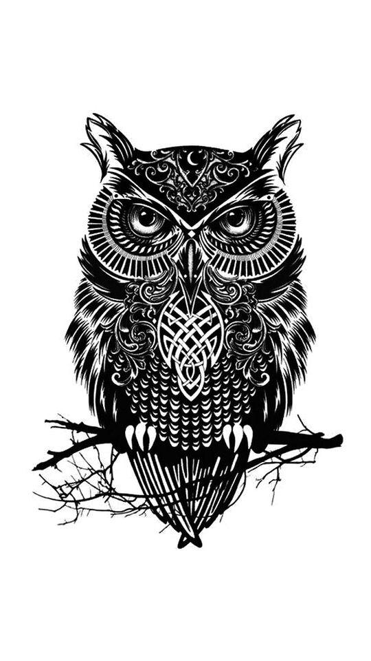celtic owl symbol the image kid has it. Black Bedroom Furniture Sets. Home Design Ideas