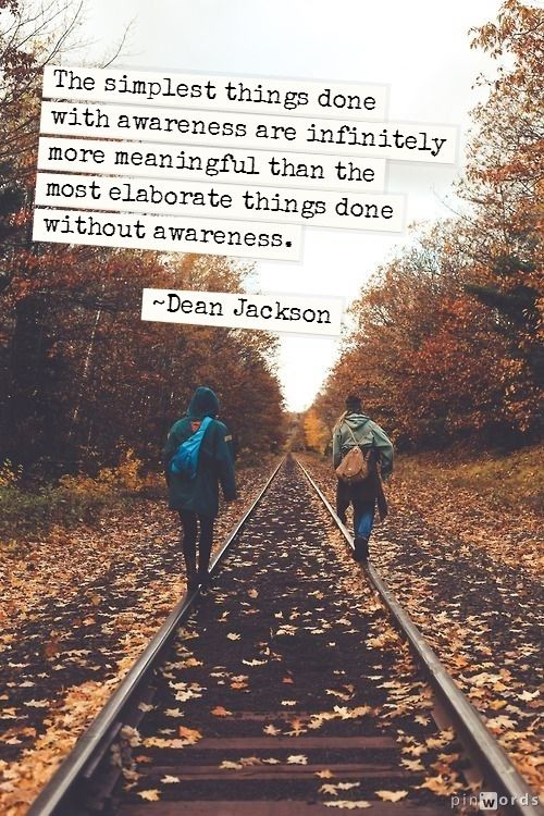 Awareness ~ Dean Jackson The Journey, Fall Leaves, Walks, Autumn Leaves, Training Track, Photos Shoots, Nature Photograp...
