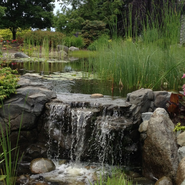 Landscape Gardening Courses Surrey u2013 izvipi.com