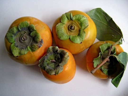 magical way to eat persimmons. What would be magical is if I ...