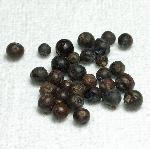 Juniper Berries Syrup | Zero Proof Mocktails | Pinterest