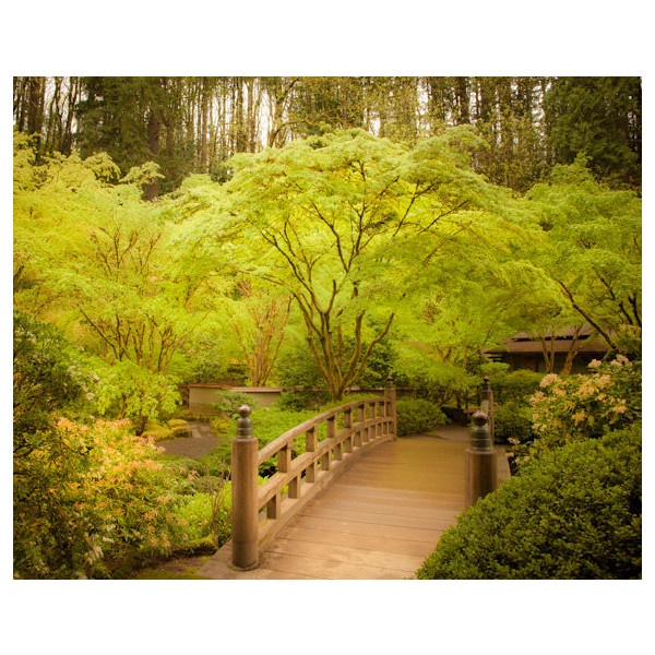 Pin by star on polyvore creations pinterest for Zen garden bridge