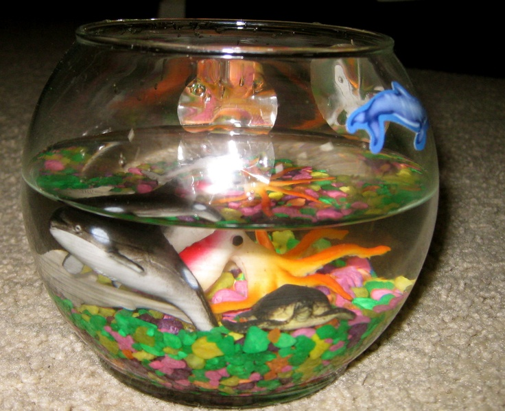 fish bowl with fake fish planning events pinterest