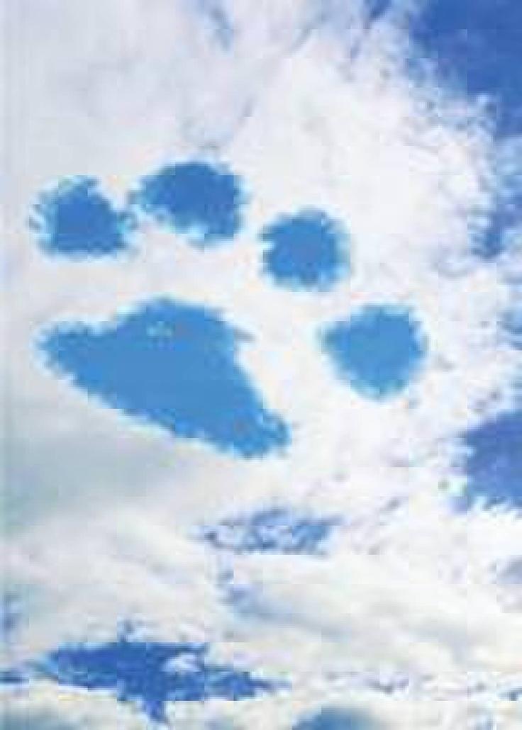 Cloud paw print | Paw prints | Pinterest