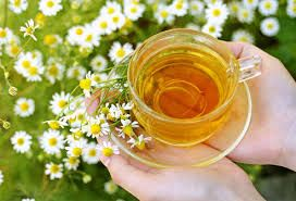The Benefits of Chamomile Tea | Natural Alternative Remedy