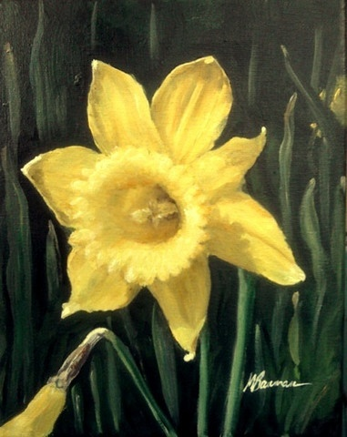 Various Daffodils To The Daffodils Heres The Daffodils