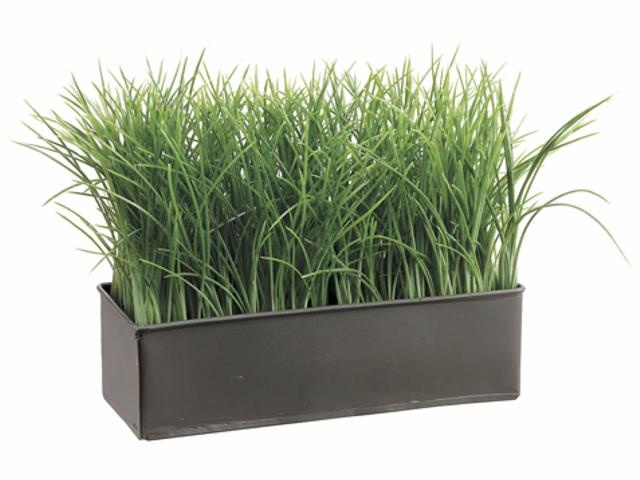 ... grass in black container | Table Centerpieces and Decor | Pinte