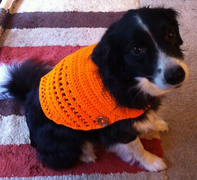 Crochet Dog Vest Free Pattern : dog vest Crochet Pinterest