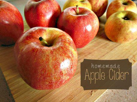 Homemade Apple Cider | Recipe