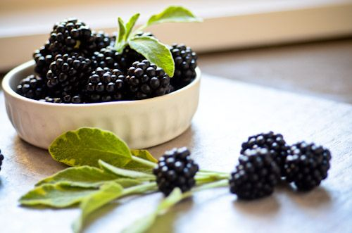 Blackberry Sage - 7 Fantastic Flavored Water Recipes You Can Try ...