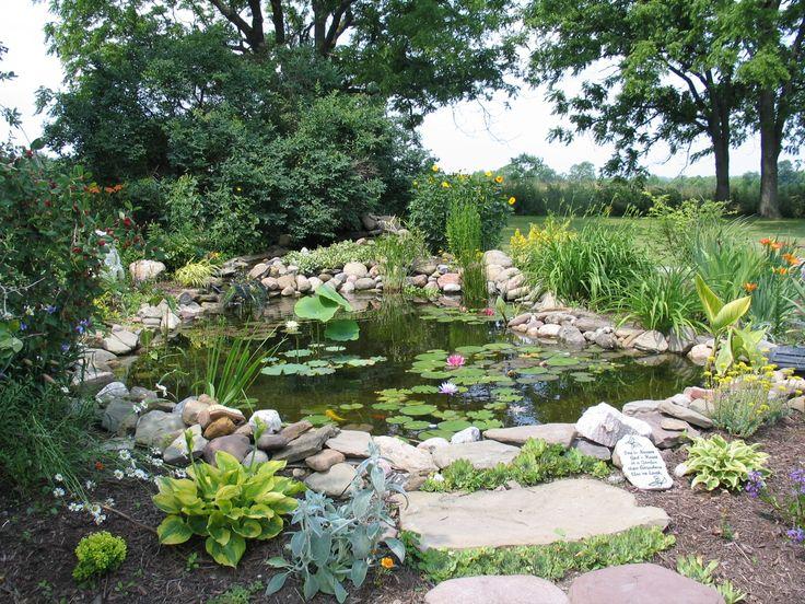 pond images Pond , Seasonal Pond Care Pond plans Pinterest