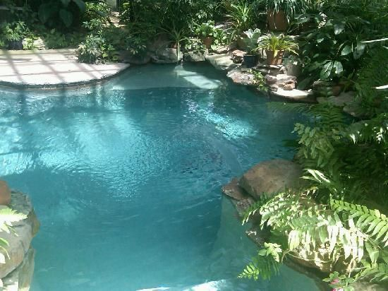 Indoor saltwater pool greenhouse home pinterest for Swimming pool greenhouse