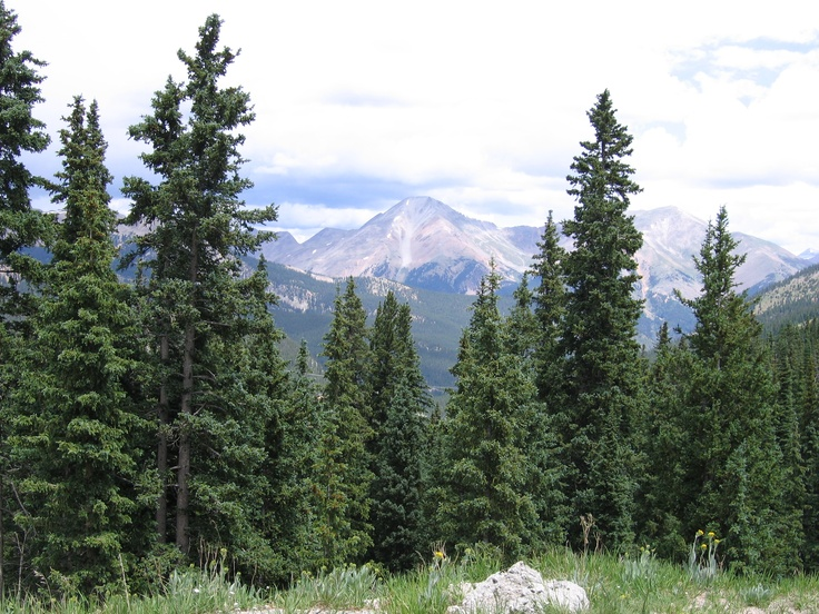 how tall is monarch pass
