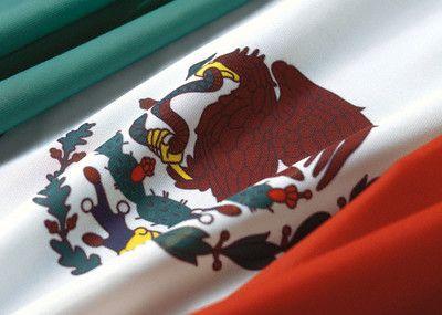 eagle and snake flag