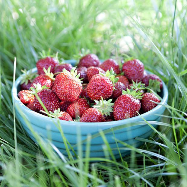 from themeadowbrookblog.blogspot.com | Noms | Pinterest