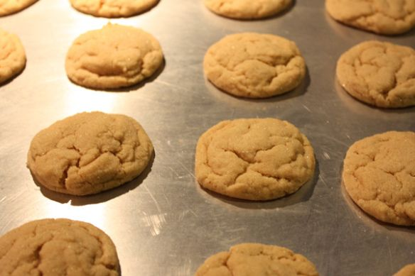 Soft & Chewy Peanut Butter Cookies | Recipe