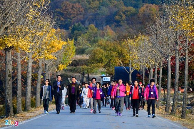 Con đường vào khu du lịch Andong Hahoe, tỉnh Gyeongju, Hàn Quốc mùa thu