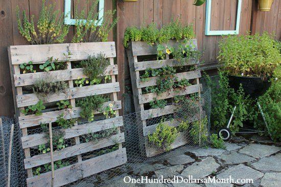 Vertical Pallet Garden Gardening Pallet Gardening