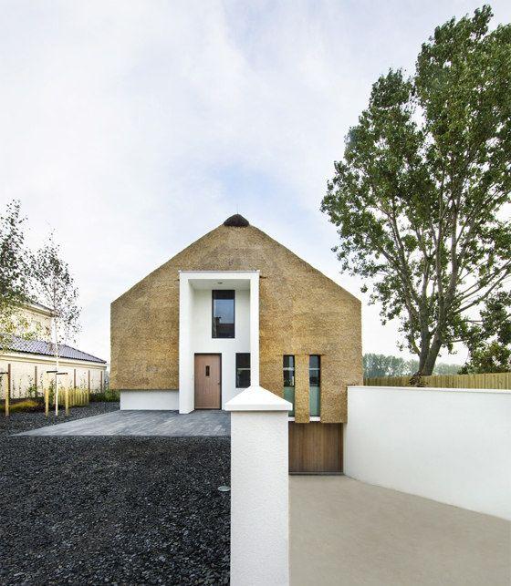 Modern thatch home.