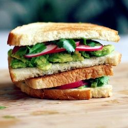 Grilled avocado sandwich with pickled jalapeno, cilantro and radish.