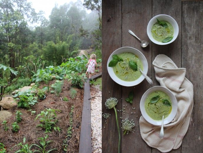 Zucchini Soup (Use Green Lentils in place of Tofu)   The Wooden Spoon