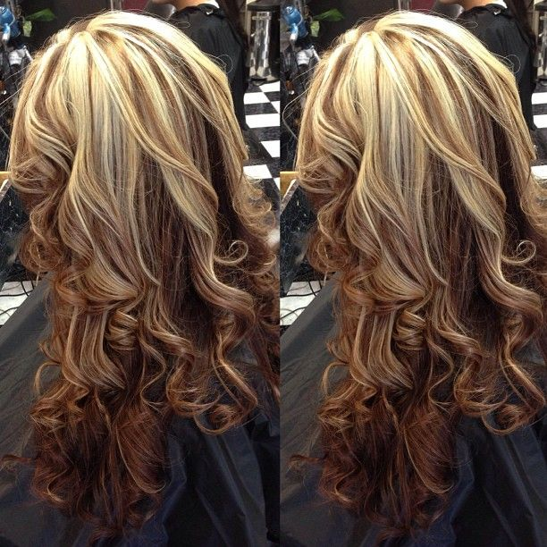 Highlights In Long Hair Hairs Picture Gallery