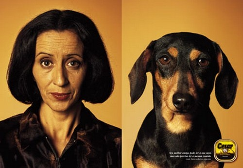 Do people choose dogs who look like them?  Or do they start to look alike after a while?