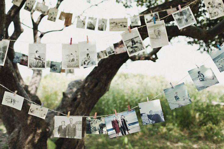 Fotos & Pinzas