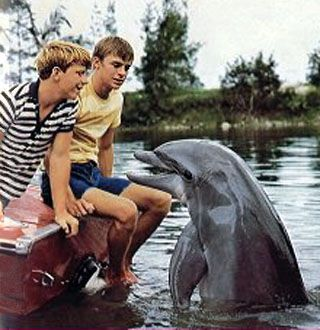 Flipper - I used to envy those boys and their relationship with that dolphin..lol