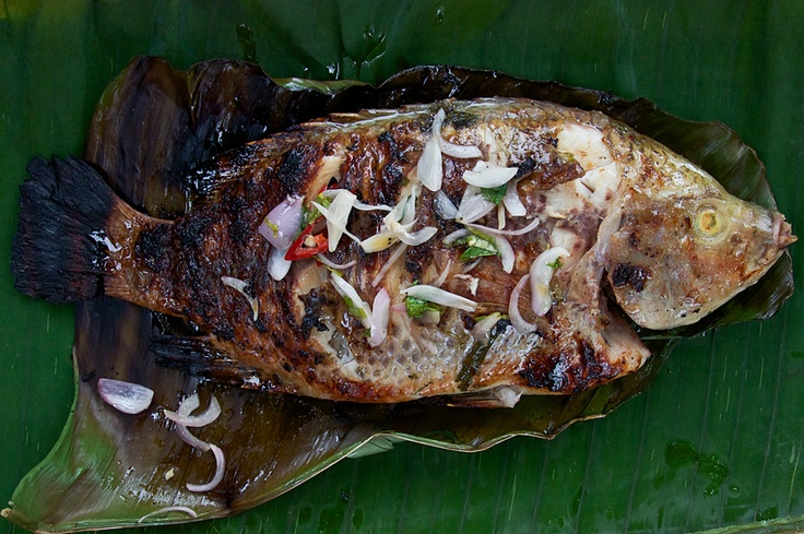Grilled Tilapia - AQCTaste Magazine | Food | Pinterest