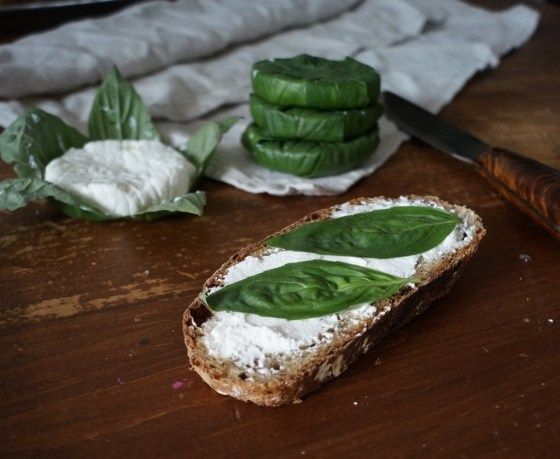 "Recipe for basil wrapped goat cheese from ""The Hunger Games"""