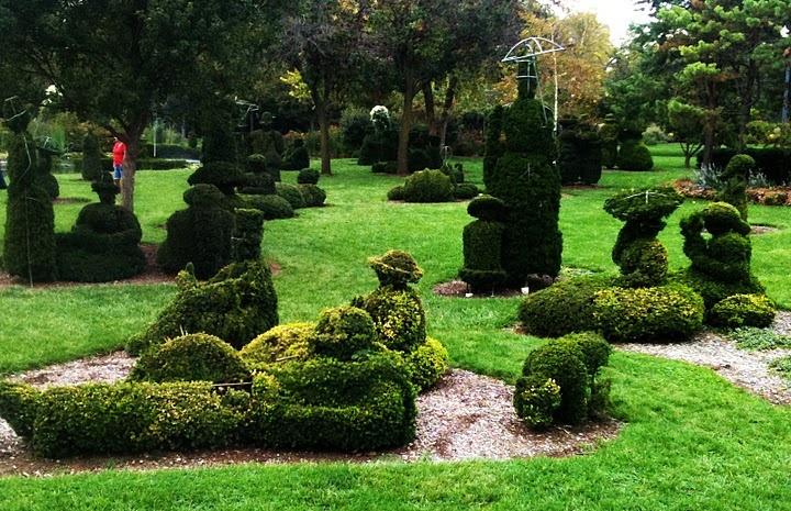Pin By Cynthia Christensen On Garden Love Pinterest