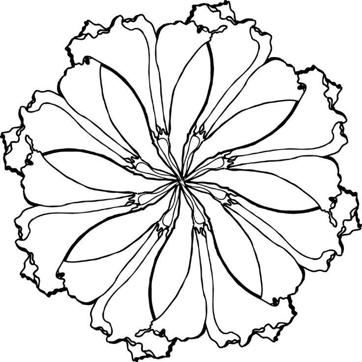 Line Art Mandala : Line drawing floral mandala drawings pinterest
