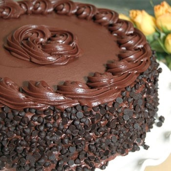 Cake Ideas With Chocolate Frosting : Chocolate cake icing idea Recipes Pinterest