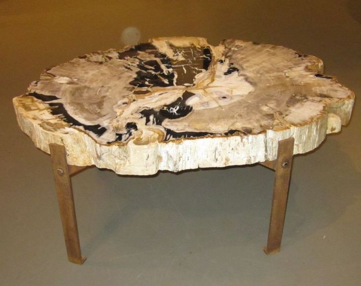 Petrified Wood Coffee Table Tables Pinterest