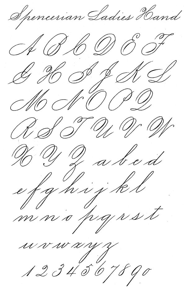 Question about spencerian script l 39 alphabet pinterest Handwriting calligraphy