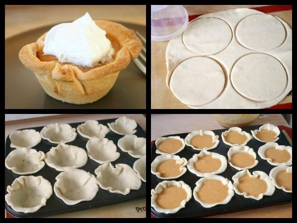 Mini Pumkin Pies:  * 2 Refrigerated ready-to-roll pie crust  * 1/2 Cup of Sugar  * 8 oz. Cream Cheese (room temperature)  * 1 Cup of Canned Pumpkin  * 1 teaspoon of Vanilla  * 3 eggs  * 1 teaspoon pumpkin pie spice  * Whipped Cream