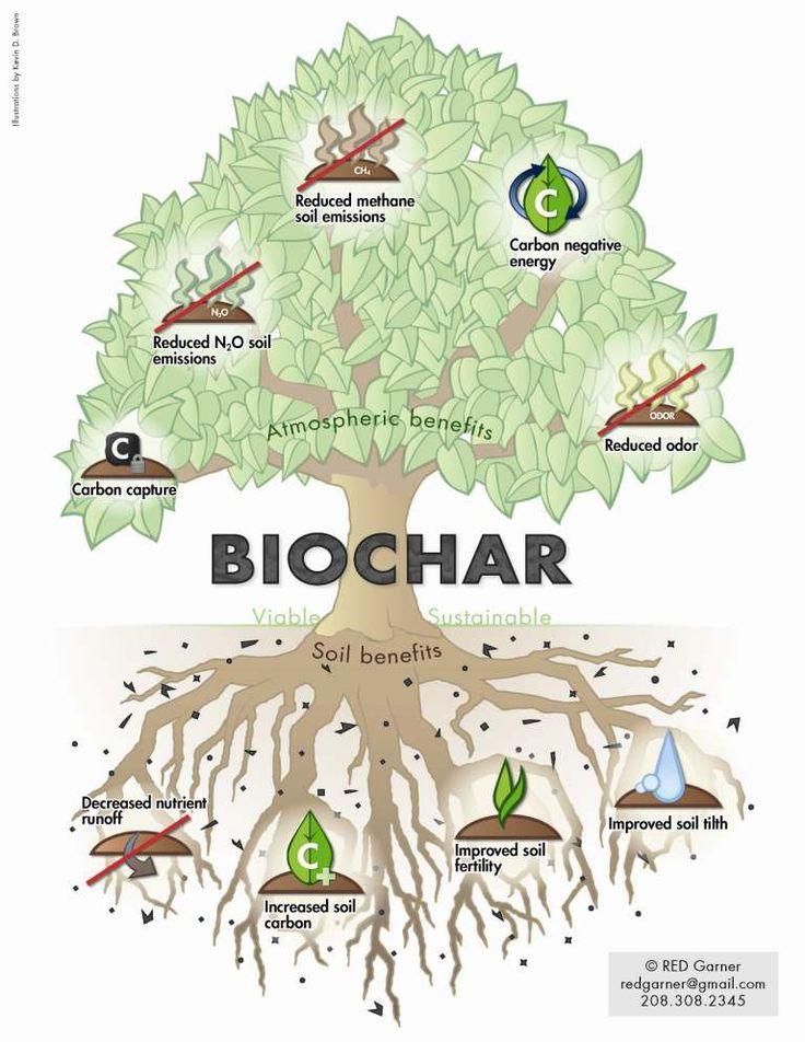 Biochar hooks it up!
