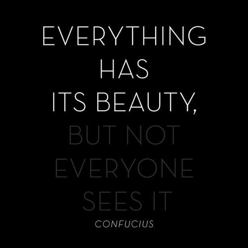 Everything Has Beauty But Not Everyone Sees It Essay