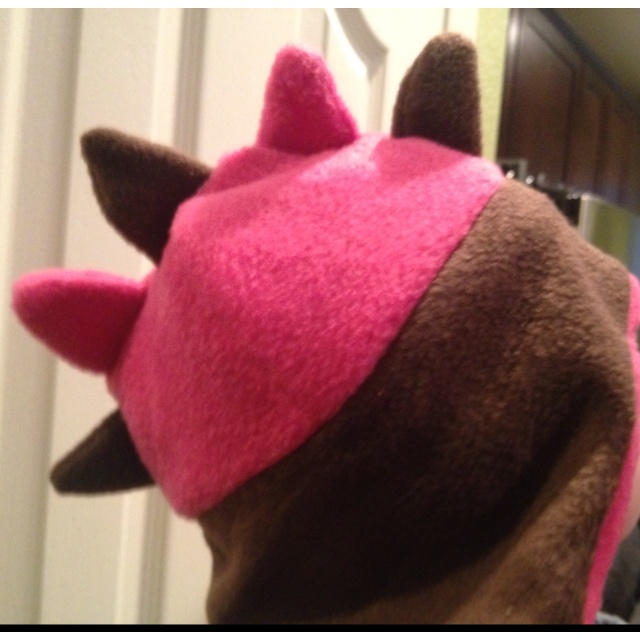 x girl hat search