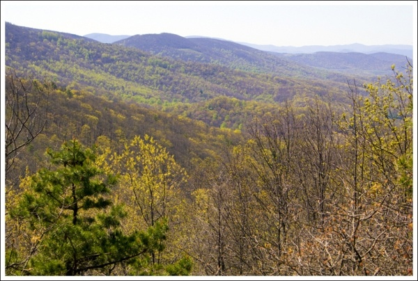 Great Website for hikes in VA