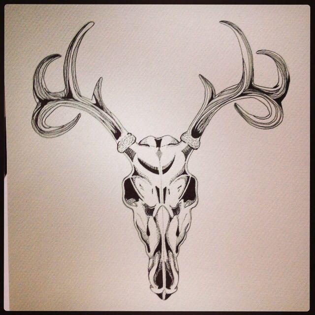 Elk skull drawing - photo#27
