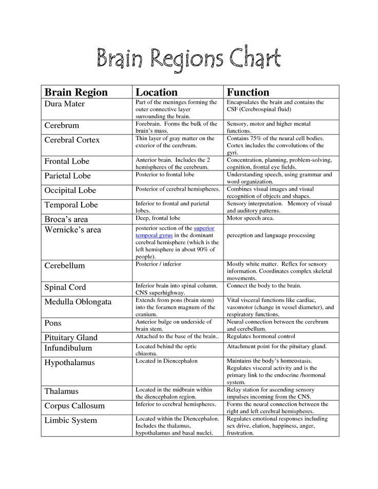 brain functions chart brain parts science pinterest