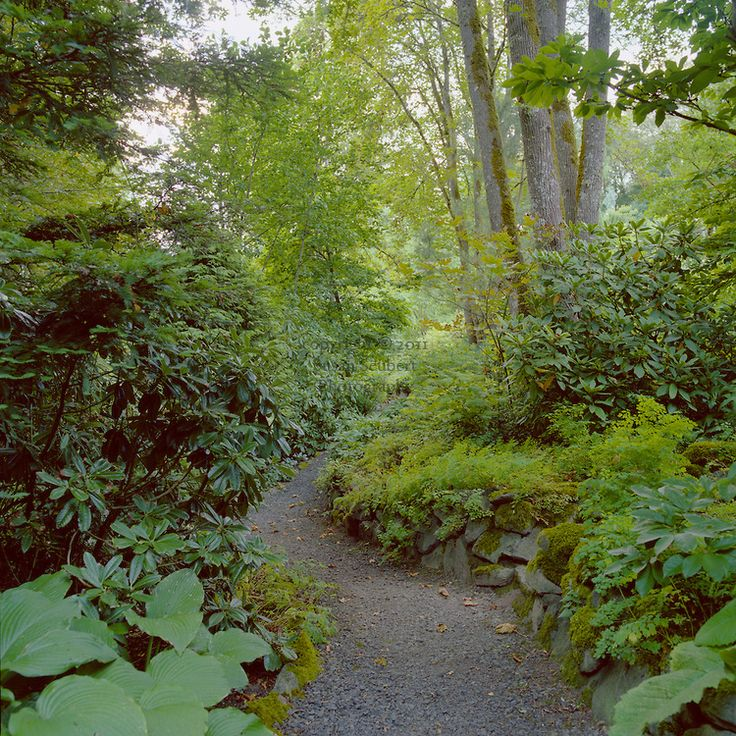 shade garden in the pacific northwest landscaping plans