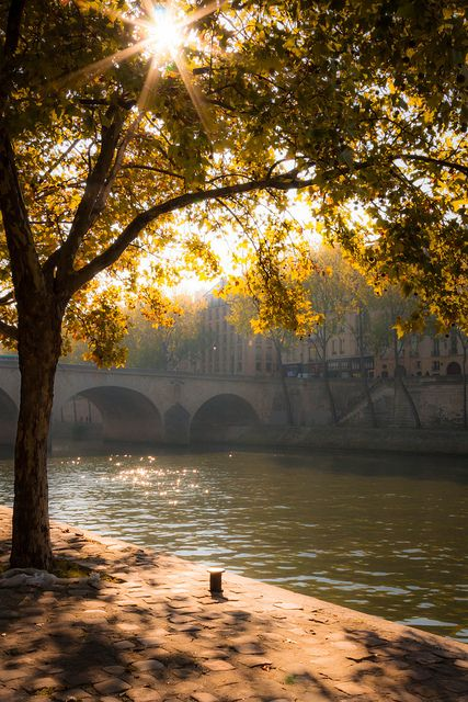 Seine in the morning light, Paris
