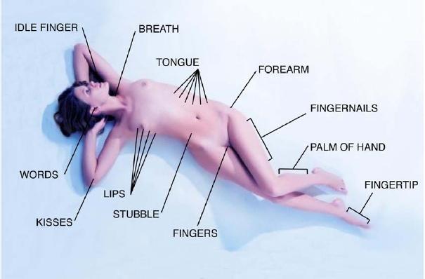 cancocainecauseerectiledysfunction erotic pressure pointsp