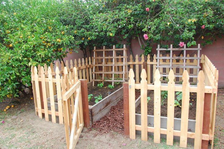 Small Garden Raised Garden Beds Pinterest