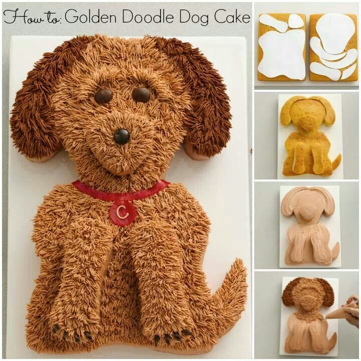 Golden Doodle Cake Cakes And Cupcakes Pinterest