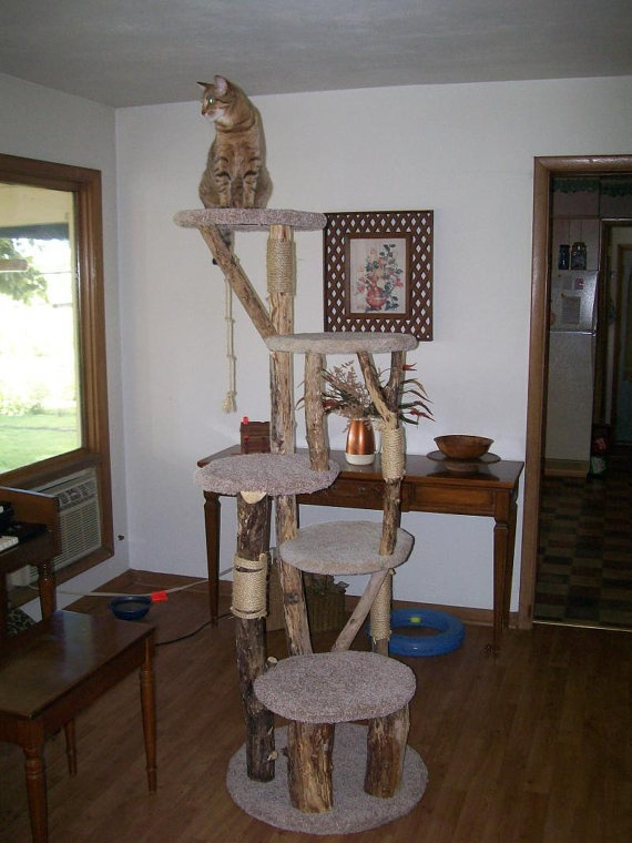 Pin by megy boo on diy cat tower ideas pinterest for Homemade cat tower