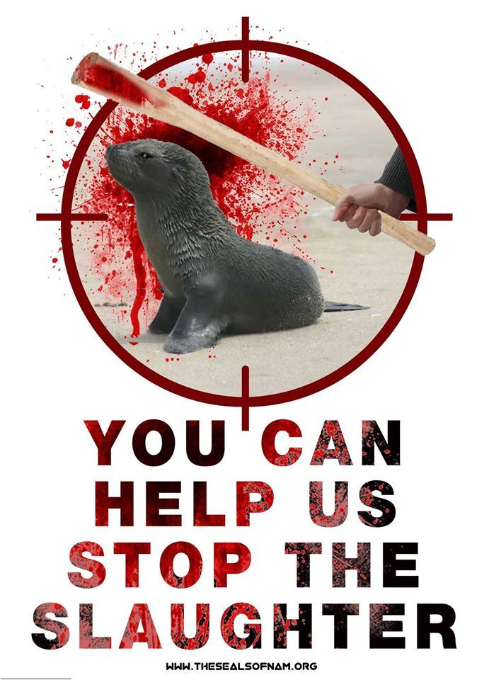 Urgent! Time is running out on this important petition which will be delivering to the South African government. Please sign share and tweet. Thank you for your support! https://secure.avaaz.org/en/petition/Tell_South_Africa_to_stop_importing_seal_products_from_Namibia/?pv=3